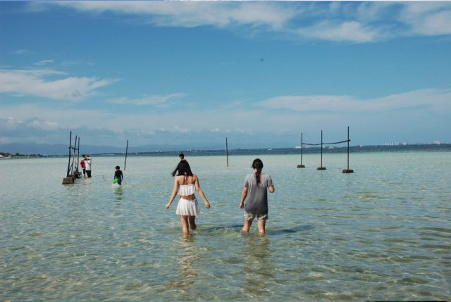 hopping-beach.jpg