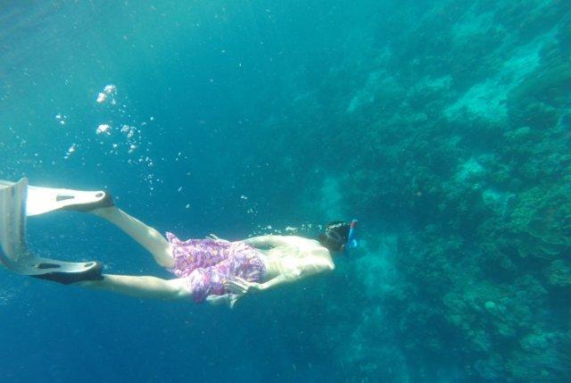 hopping-diving.jpg